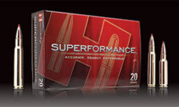 Hornady Superformance 25-06 117gr SST 20 Rounds