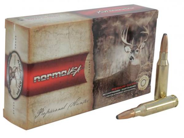 Norma Ammunition .243Win 100SP x20
