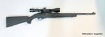 Ruger 10/22 Hogue Blued Package