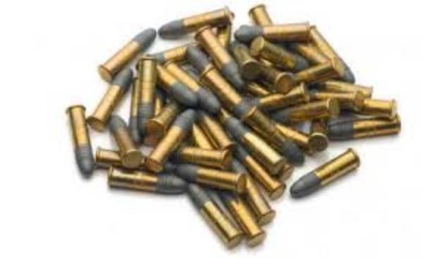 Highland Subsonic 22LR 500 Rounds
